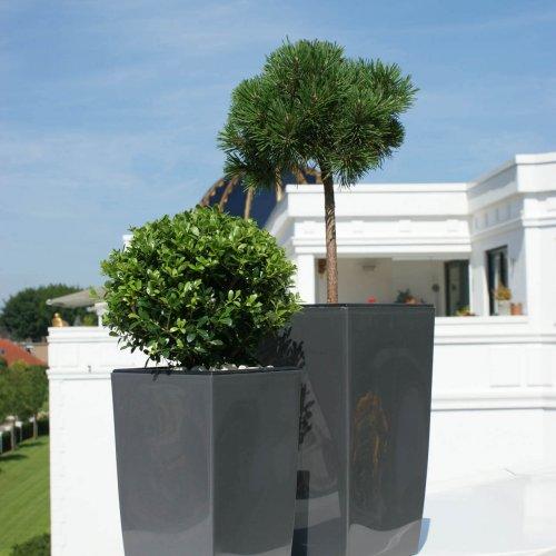 Terrassenkollektion (8)